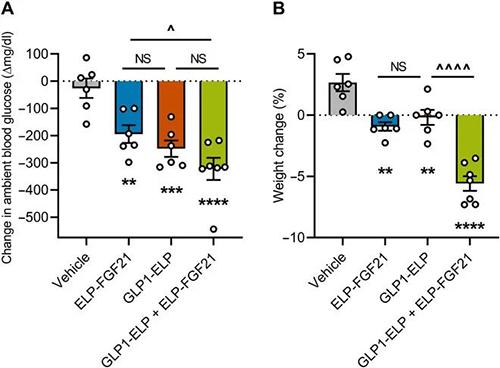 GLP-1和FGF21共同治疗增强了单药治疗的血糖降低和体重增加抑制作用 美迪西