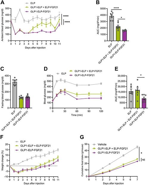 GLP1-ELP-FGF21双激动剂形式在治疗上优于GLP-1 / FGF21单激动剂混合物 美迪西